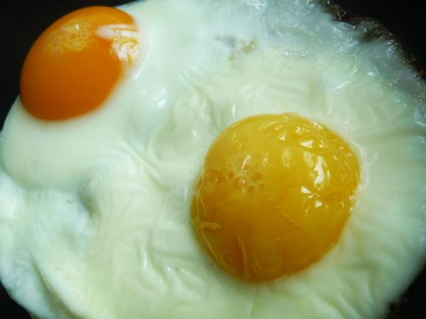 The Non Organic Egg on The